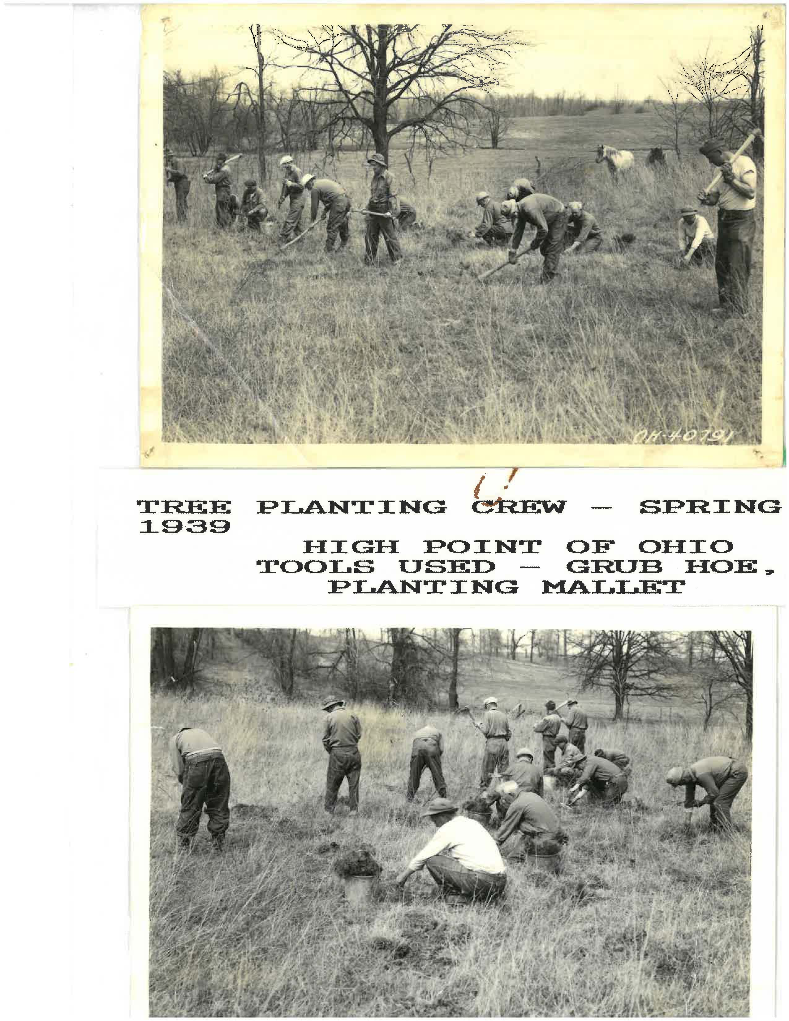 Planting_Crew_Spring_1939_High_Point_of_Ohio