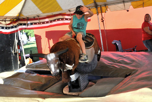 Electronic Bull Riding